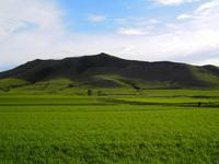 caoyuan0 3