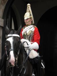 Mounted Guard 5