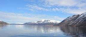 Norwegian coastal landscape 5