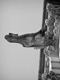 Cuenca Cathedral's gargoyle