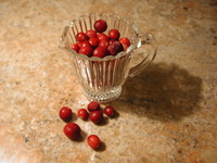 Holiday Cranberries 3