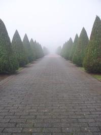 graveyard lane 1