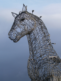 another horse