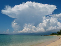 Beach @ Trinidad