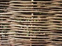 willow wickerwork texture