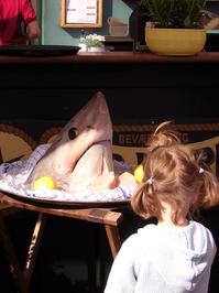 A girl looking at a sharkshead