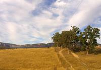 Megalong Landscape III