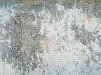 texture 14