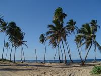 Republica Dominicana 1