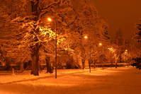 snowy urban park