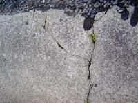 Concrete & Pavement Textures 4