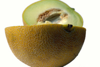 Melon serie 24