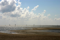 Waddenzee Friesland