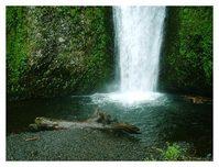 Multnomah Falls - 4