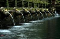Bali,Tampaksiring,Holy,Water,Temple,Bali,Holy,Spring