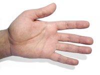 hand in action - open hand 1
