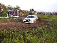 Liqui Molly Rally 3
