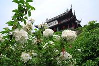 Flower castle