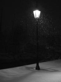 Copenhagen streetlight