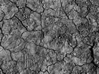 arid soil 1