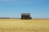 Montana landscape 2