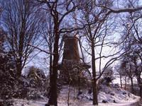 snow in alkmaar05