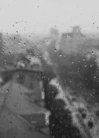 tears on windows