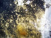 Urban Corrosion 002