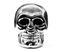 [PL] Silver Head