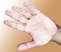 hand_SRB 1
