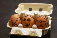 Egg Series 4