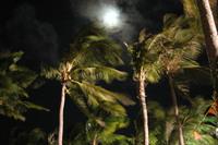 Punta Cana 18