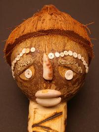 Mr Coconut Head