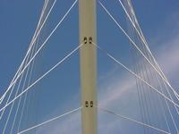 Calatrava-Harp 2