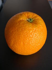 orange_port 1