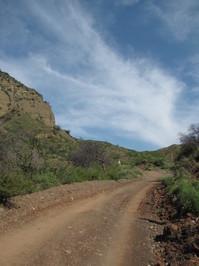 Harding Truck Trail