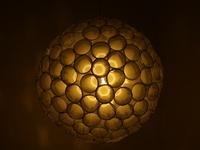 Diatomea light