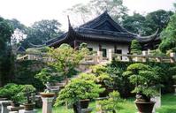 Suzhou gardens 1