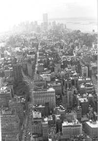 new york 1998 2