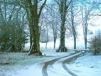 Ayrshire Snowfall