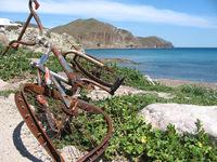 An old bike 1