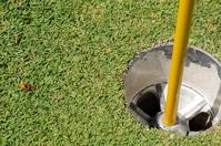 Golf Hole and Flag Pole 4
