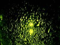 water drops 4