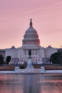 Pink Capitol