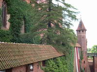 Castle in Malbork 3