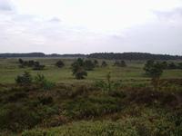 Nature Nederland 1