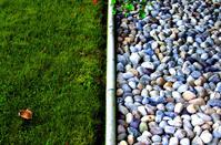 grass&stones