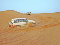 4wheels on desert