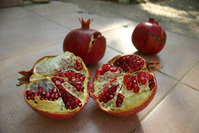 Pomegranate 7