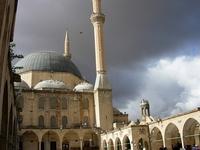 pigeon mosque